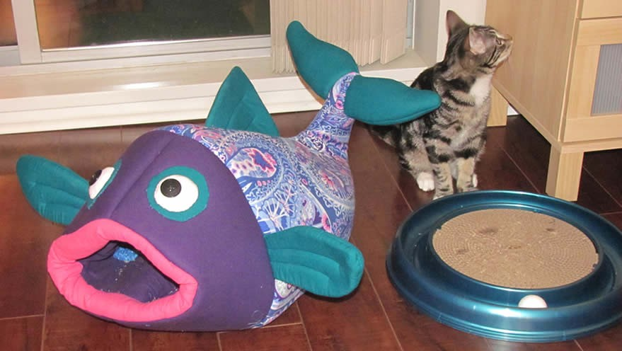 how to make cat food out of fish